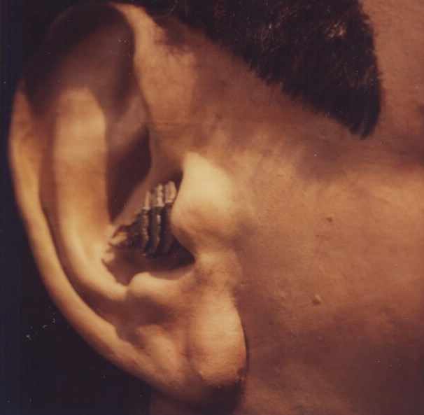 Model of Chekov's ear
