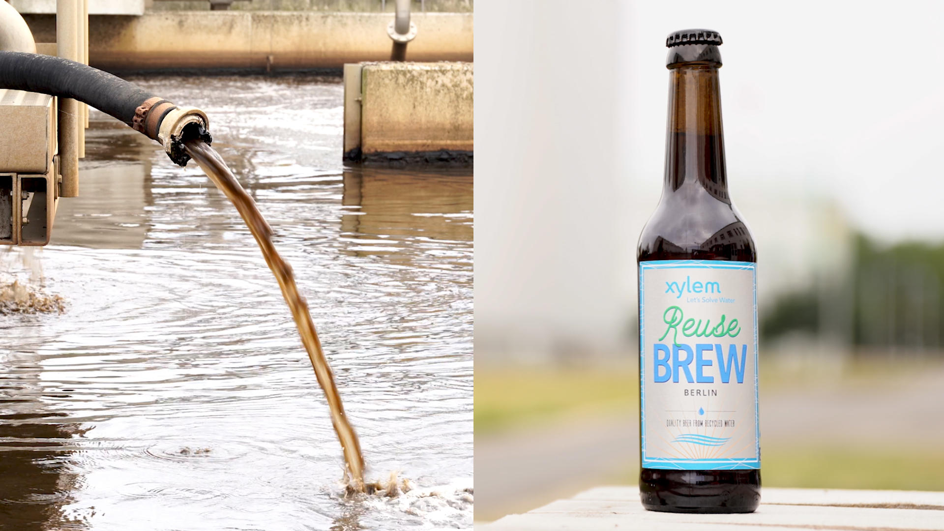 Video: Waste not: This rare beer was made from Berlin's reused toilet water