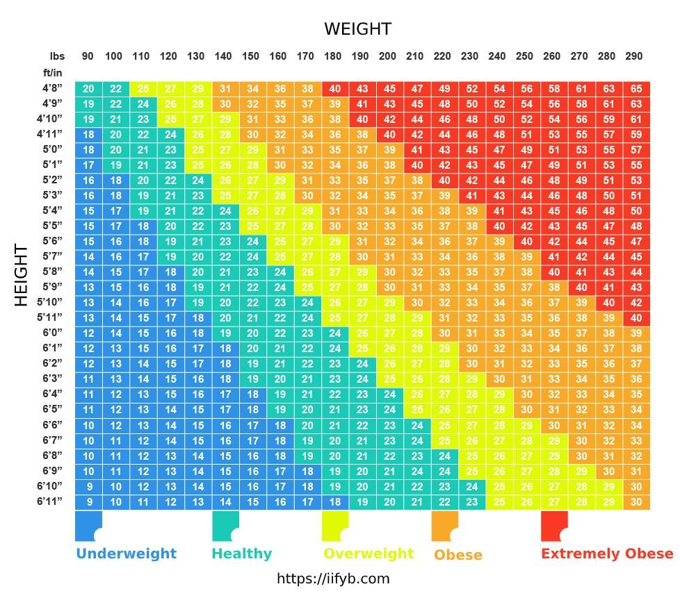 Body mass index vs. body fat percentage Only one of them actually ...