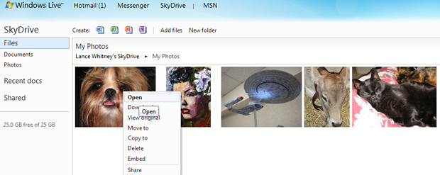 Microsoft has beefed up SkyDrive with better file management and other improvements.
