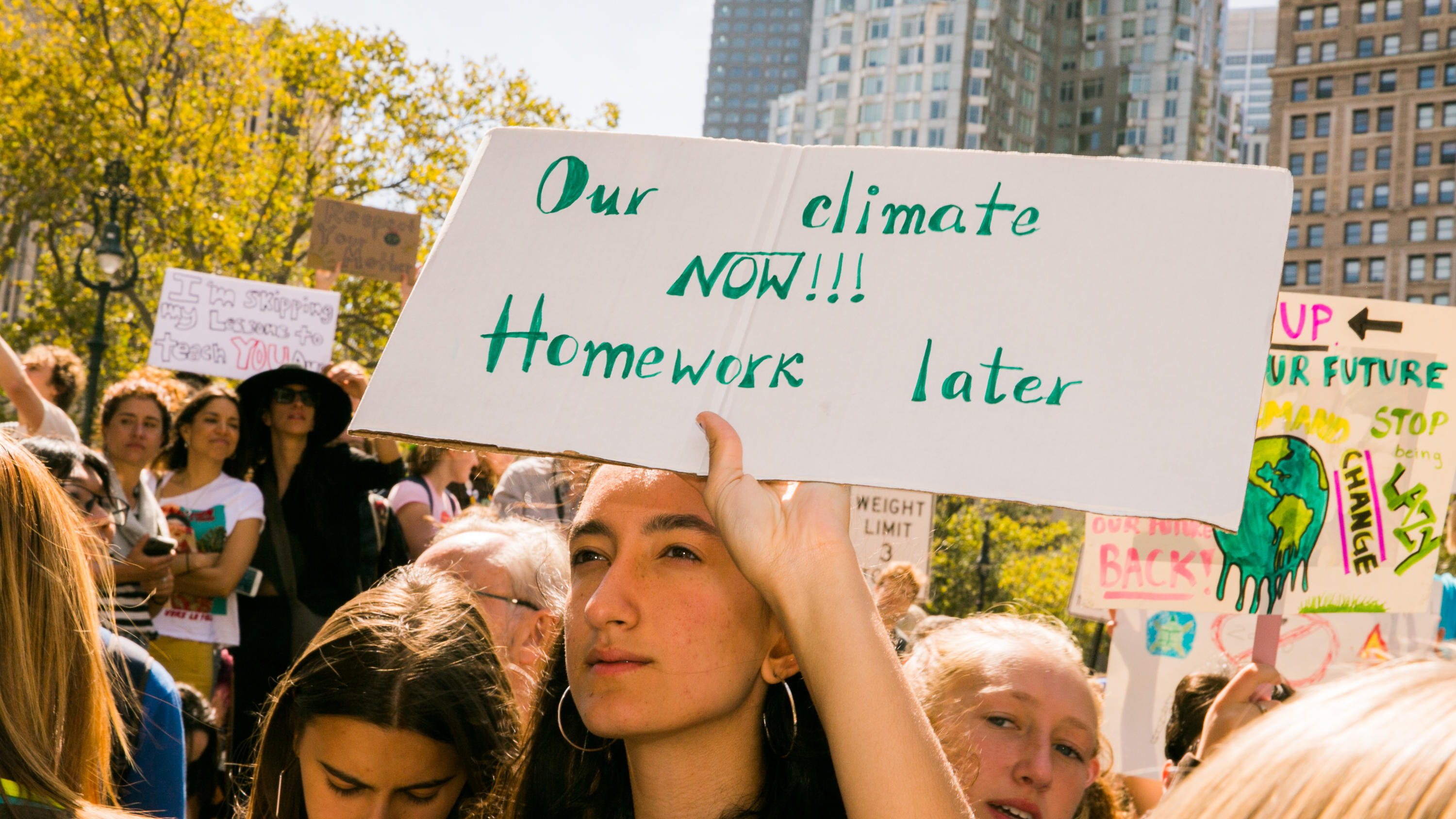 Youth-led Climate Strike NYC September 20th, 2019