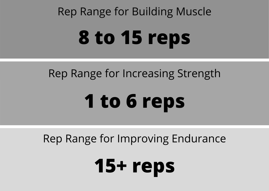 rep-range-for-building-muscle.png