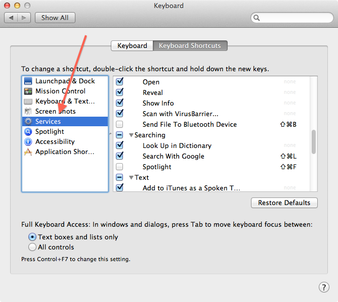 Services section of the Keyboard system preferences.