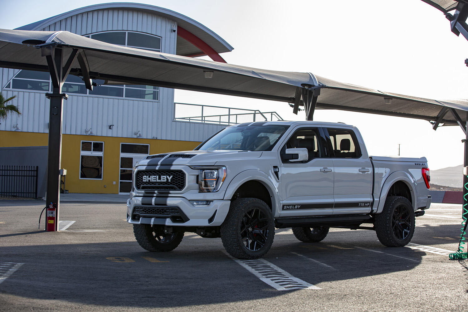 Shelby Ford F-150
