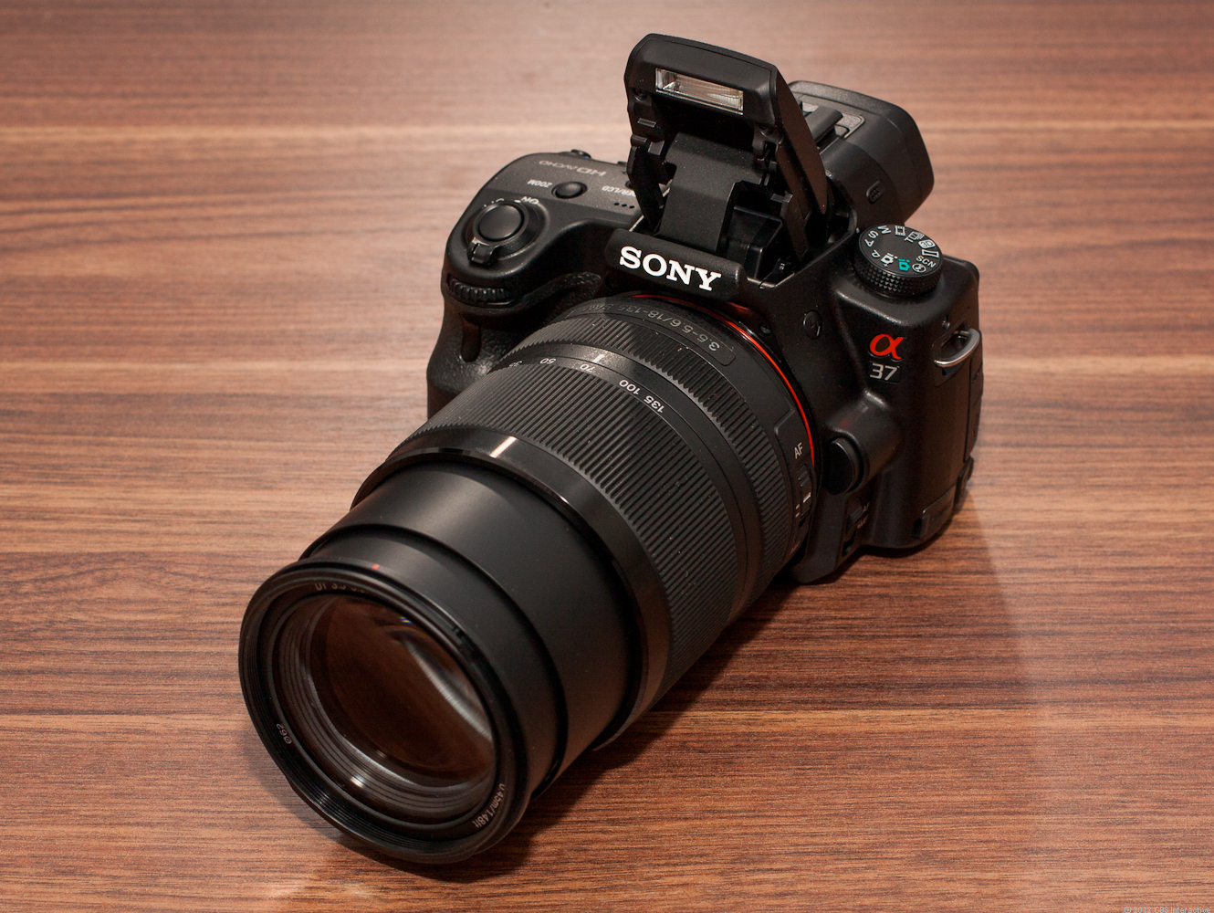 Sony Alpha A37 (with 18-55mm lens)