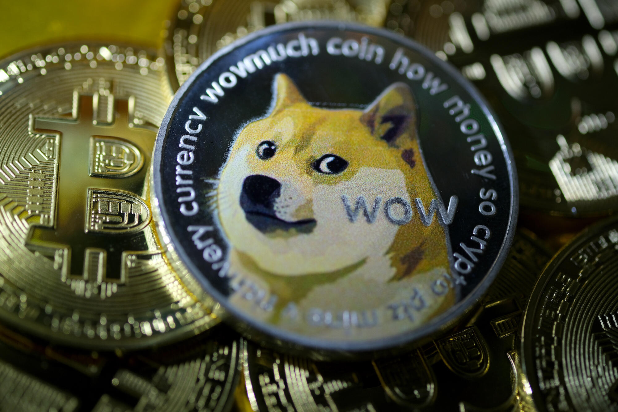 A coin with a dog saying