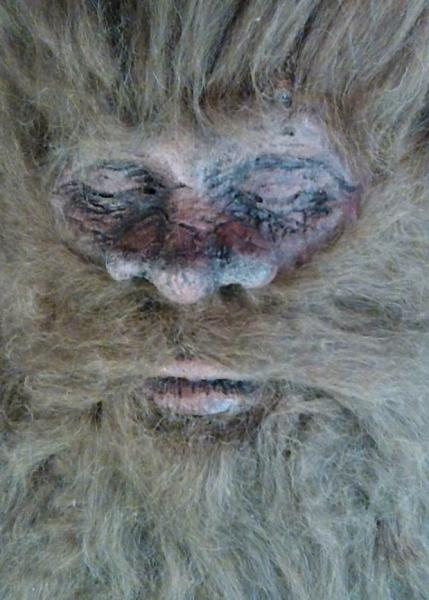 According to hunter Rick Dyer, this deceased Bigfoot is eight feet tall and a over 700 pounds.