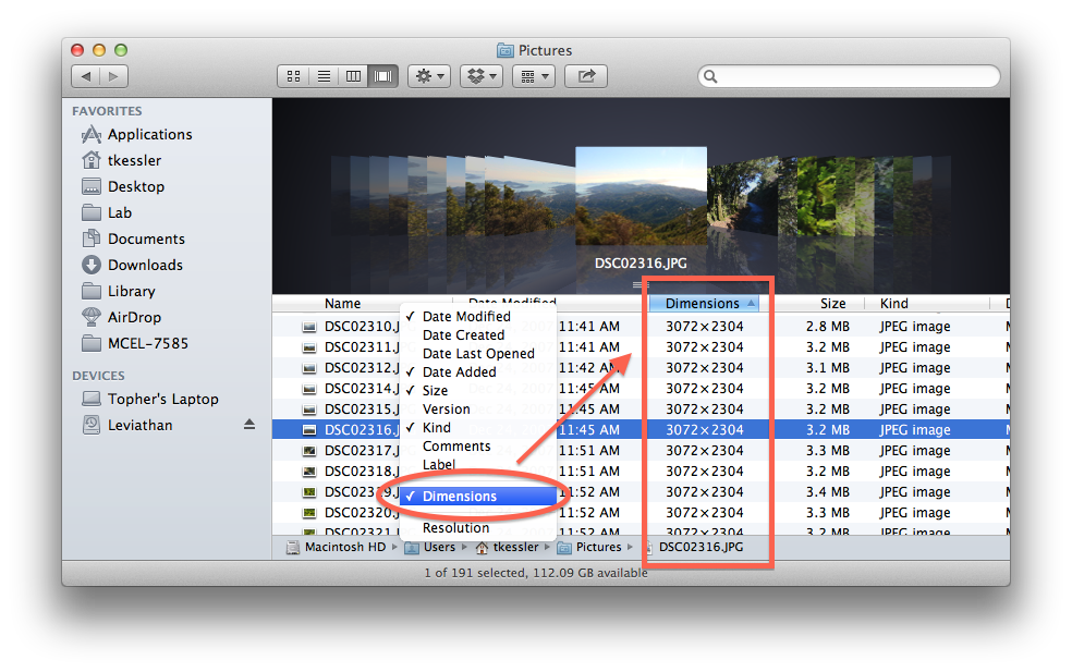 Optional sorting columns in OS X