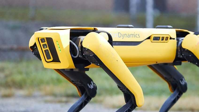 NYPD terminates robot police dog contract with Boston Dynamics     - CNET