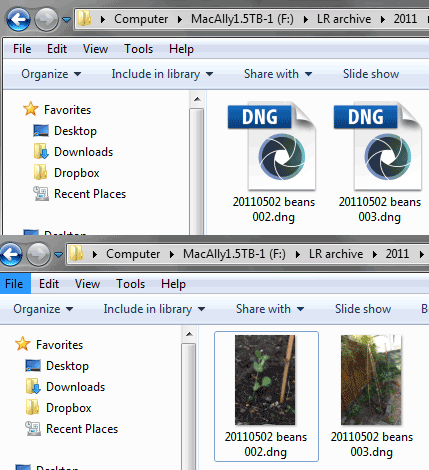The DNG codec for 64-bit Windows turns generic icons into thumbnails.