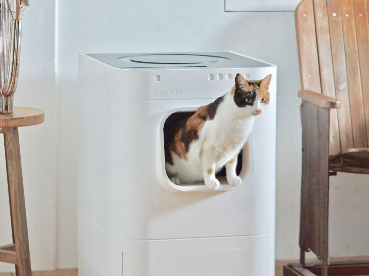 <p>LavvieBot re-imagines the self-cleaning litter box.</p>