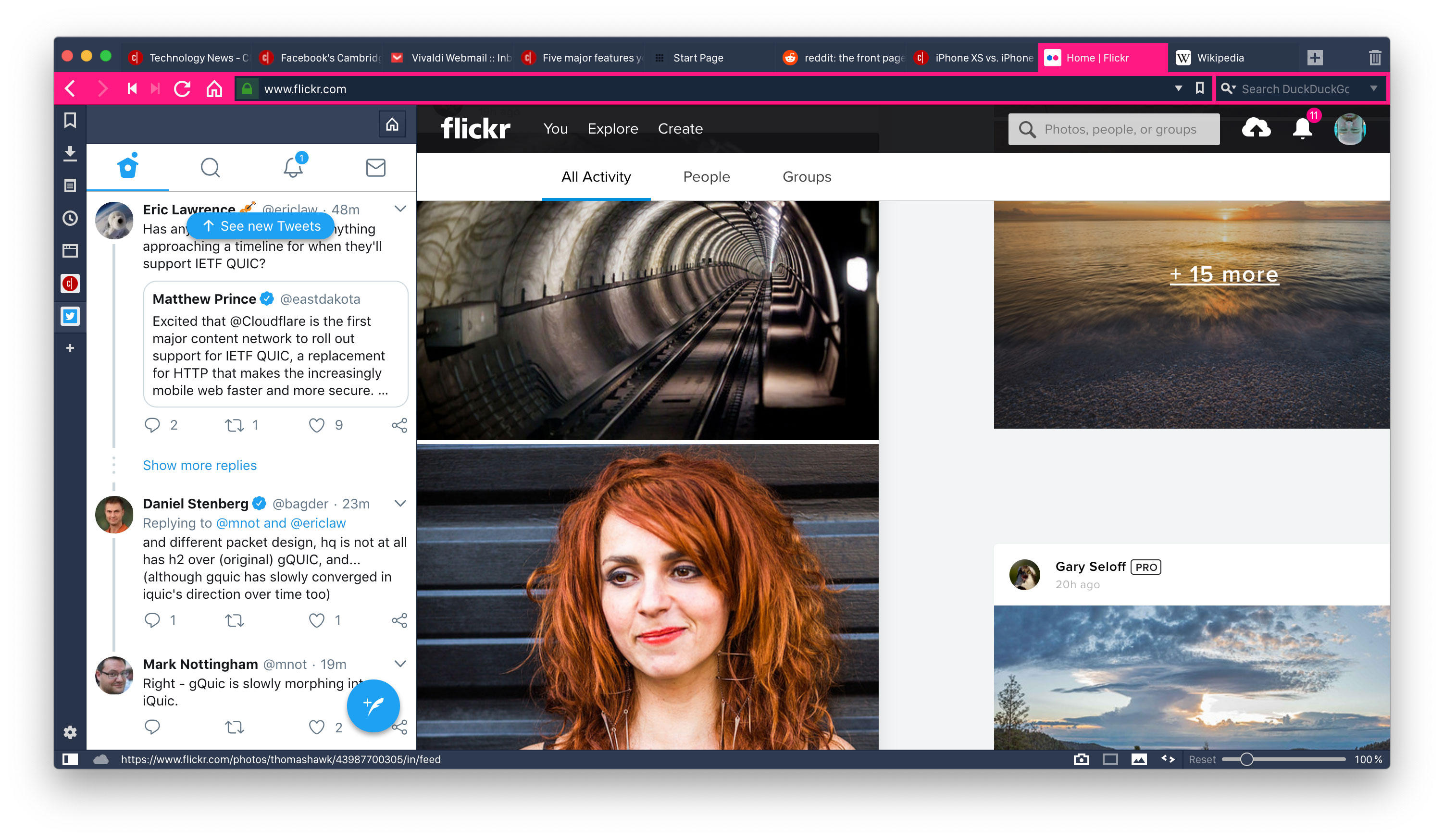Vivaldi 2.0 themes can mimic the color scheme of the website you're visiting -- in this case Flickr -- and web panels on the left can give you a quick look at websites like Google Translate, Twitter, or whatever else you like.