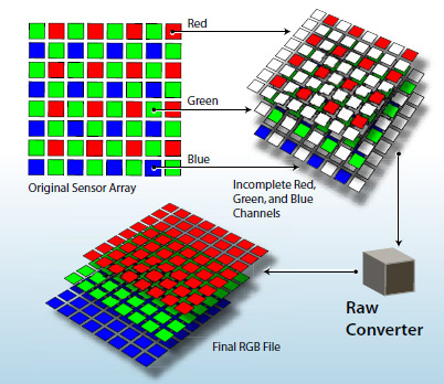 """Raw photos store data from an image sensor before it's been converted into a JPEG. Typical image sensors capture only red, green, or blue for a pixel, and through """"demosaicing"""" convert that data into a useful image with all three color elements for each pixel."""