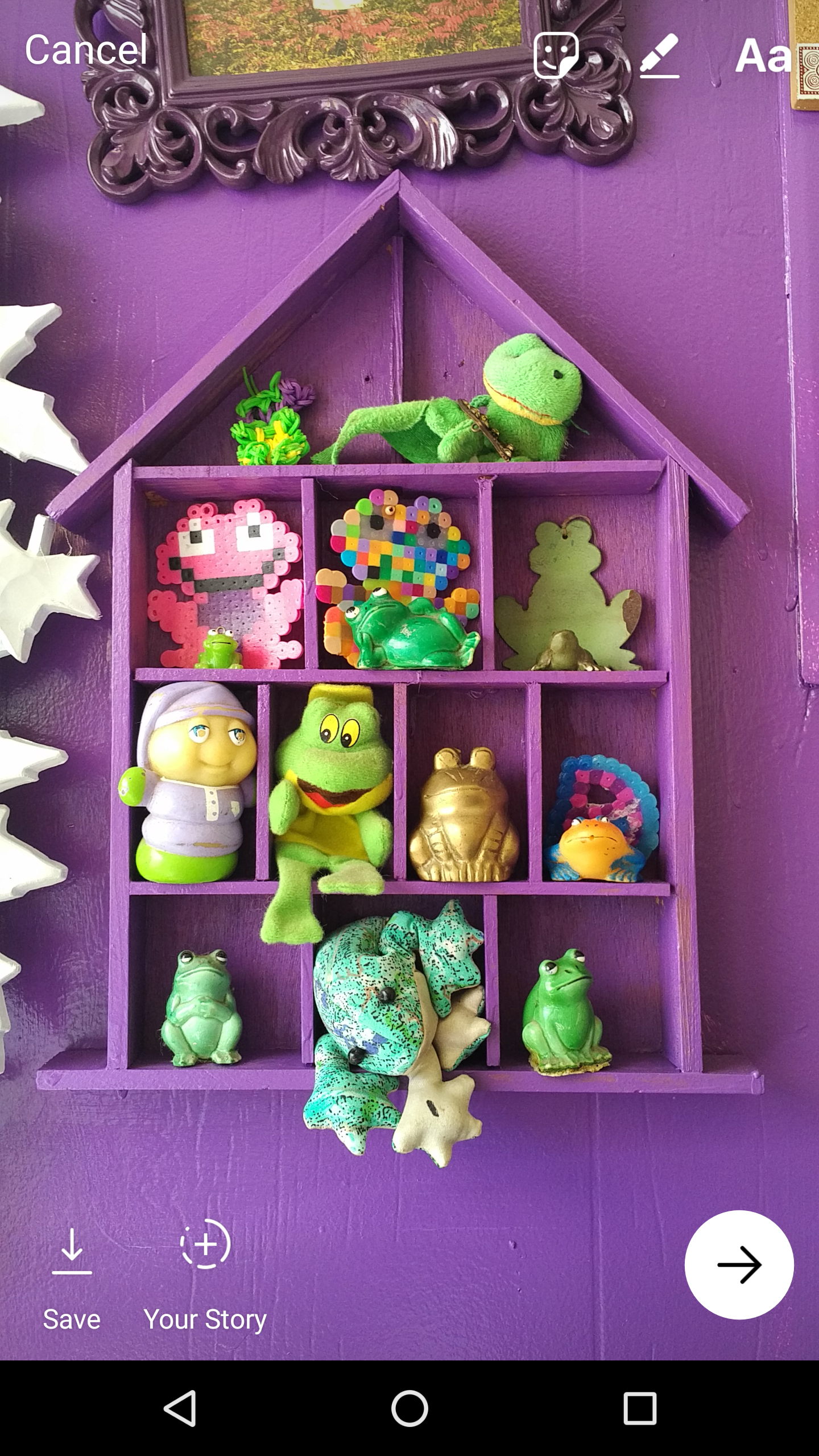 my-frogs-instagram-post.png