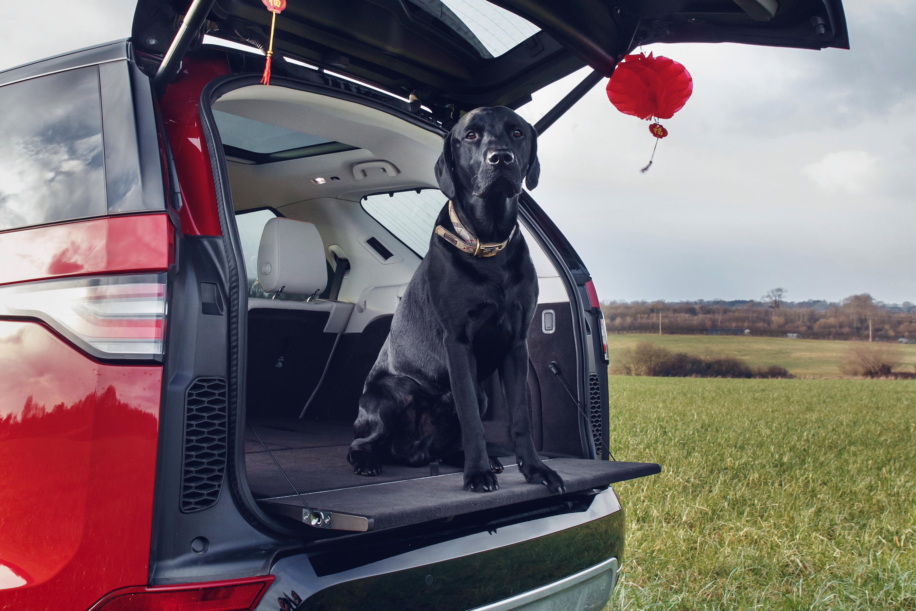 land-rover-pet-pack-promo