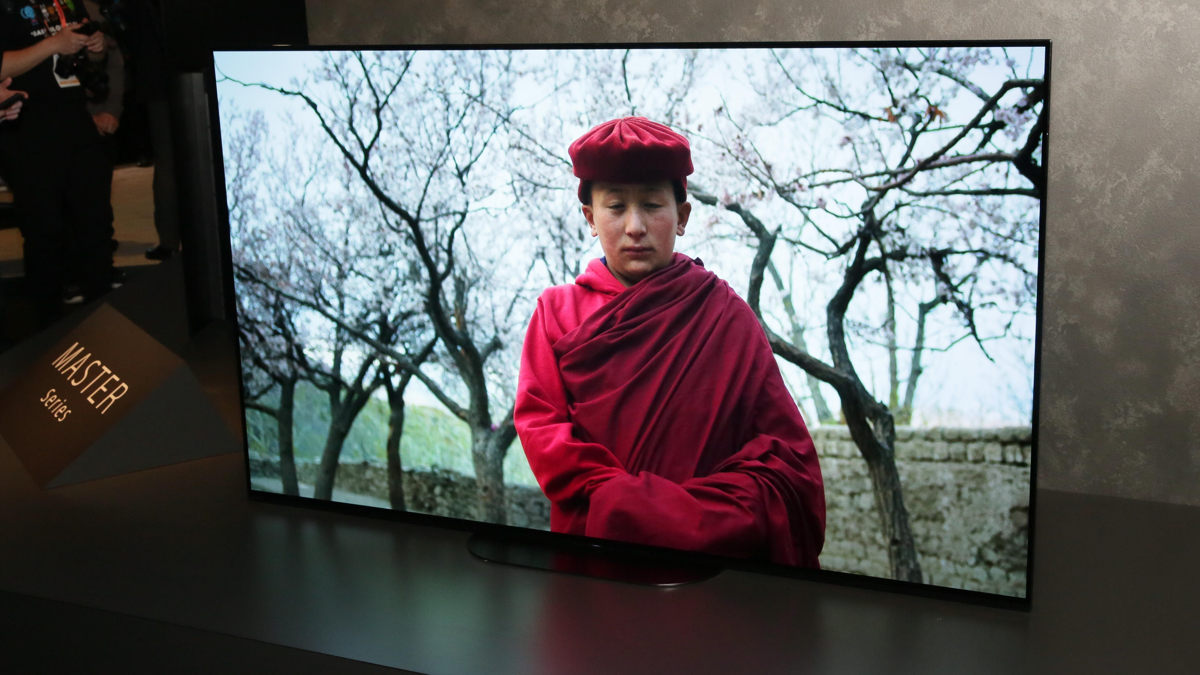 01-sony-master-series-a9g-65-inch