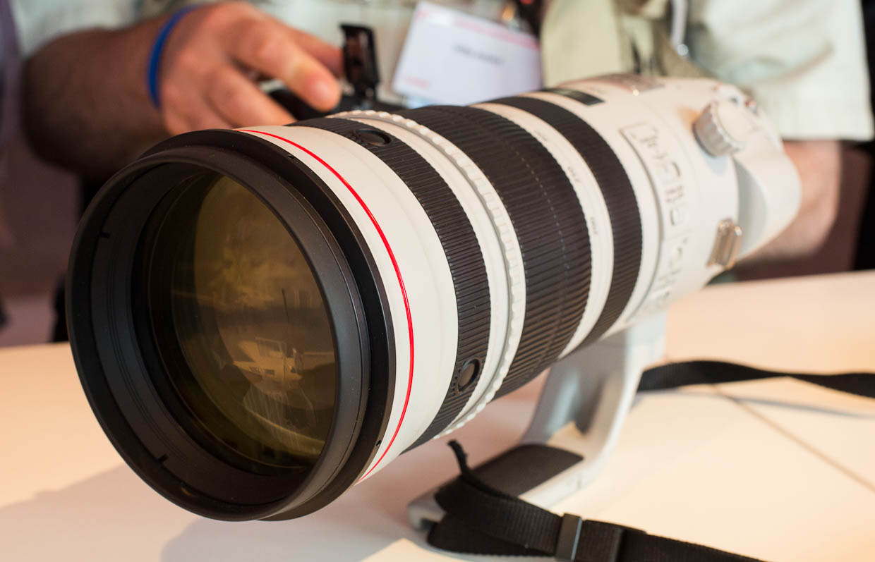 Canon's 200-400m f/4L IS lens has a large objective lens -- but not as large as the brighter 400mm f/2.8 lens Canon also sells.