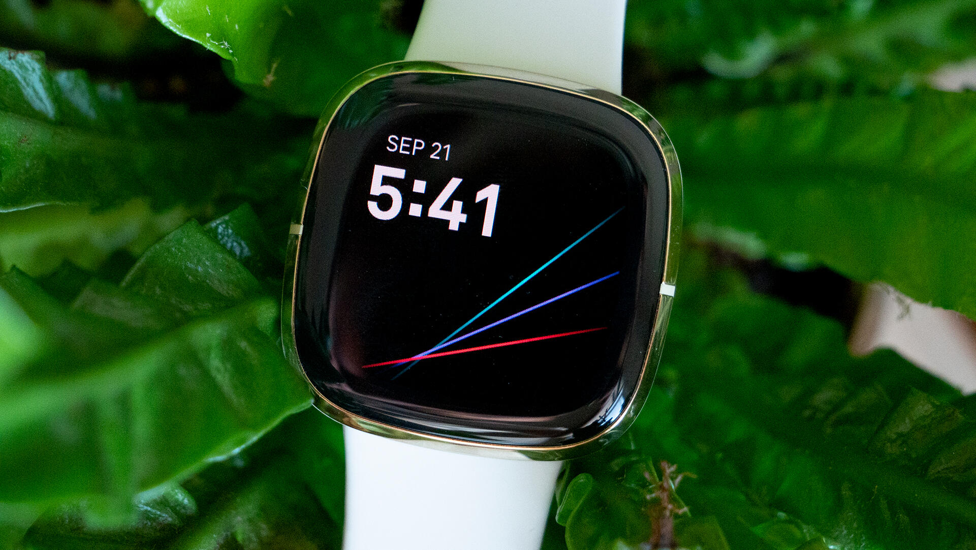 How The Apple Watch Series 6 Compares To The Fitbit Sense 5 Main Takeaways Cnet