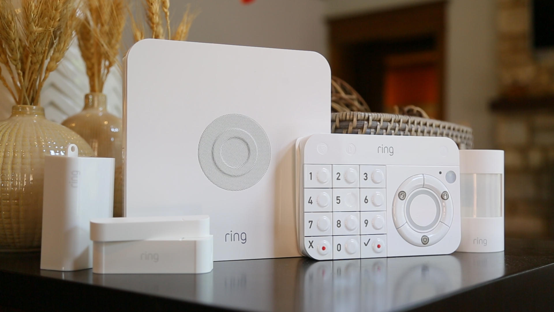 fl-ring-security-10
