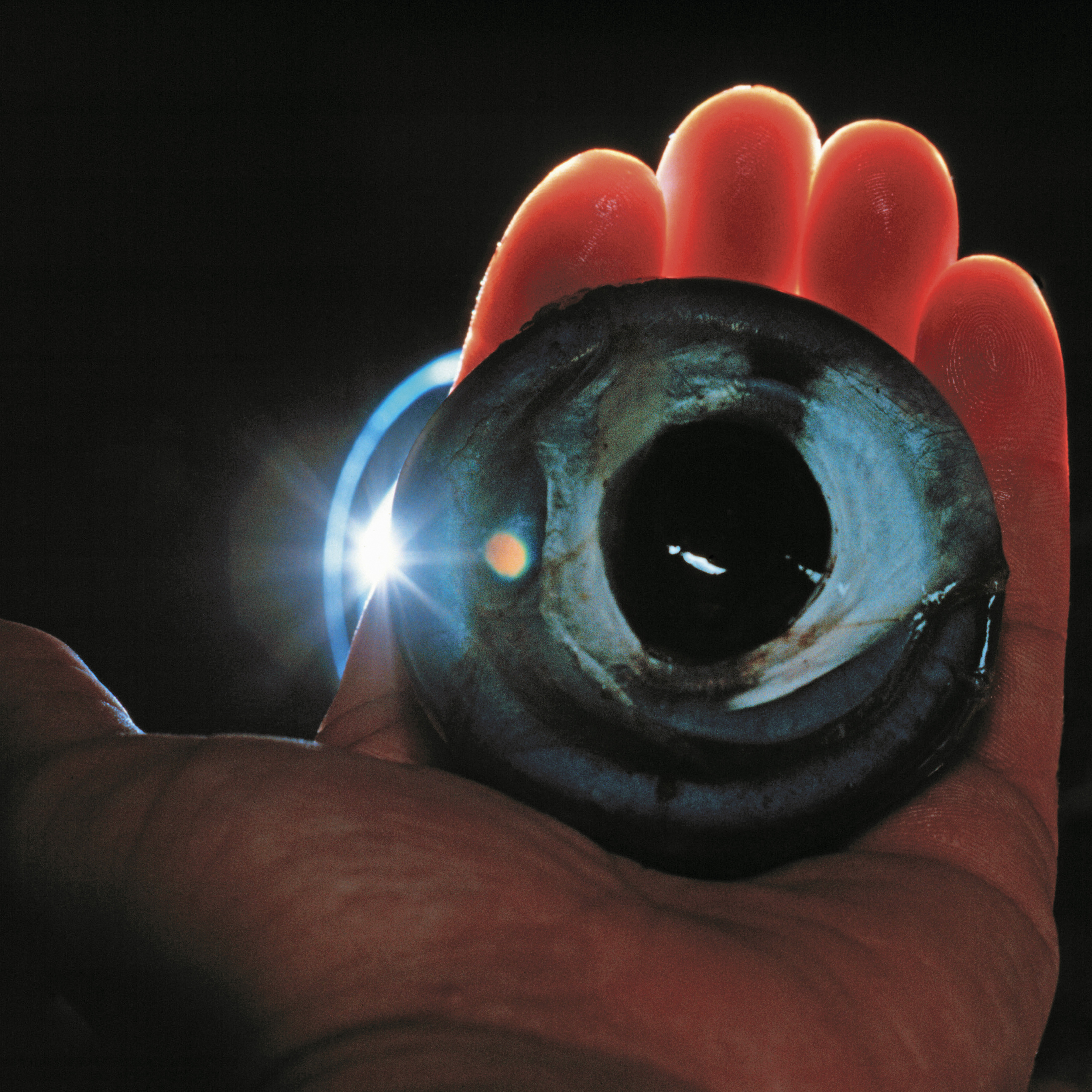 Now that's an eyeball
