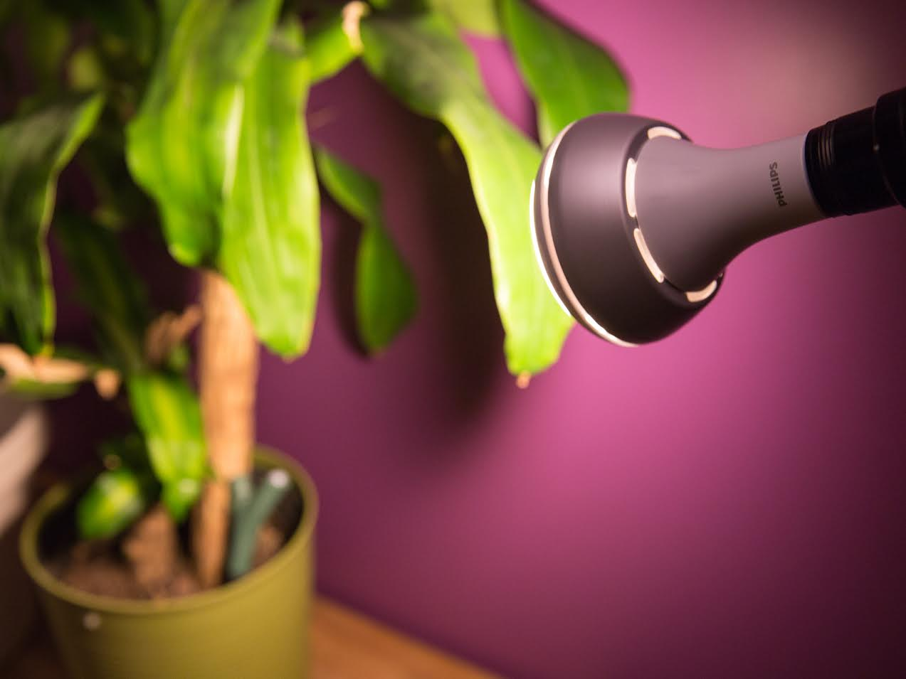 Parrot Flower Power and Philips Hue LEDs