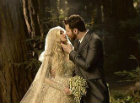 Sean Parker's wedding picture, as posted to his Facebook profile.