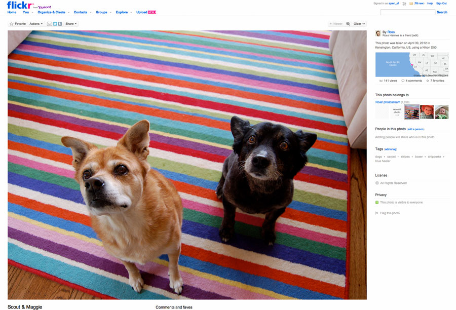 """The new """"liquid layout"""" look of Flickr's main photo pages."""