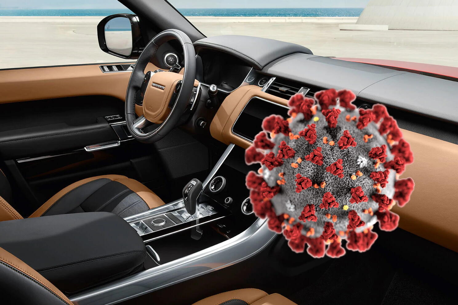 Viruses and germs in cars