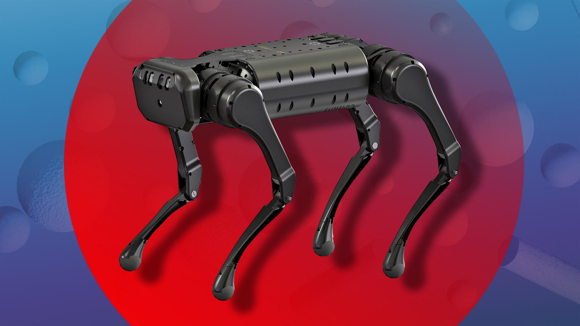 Video: Watch this robotic dog backflip