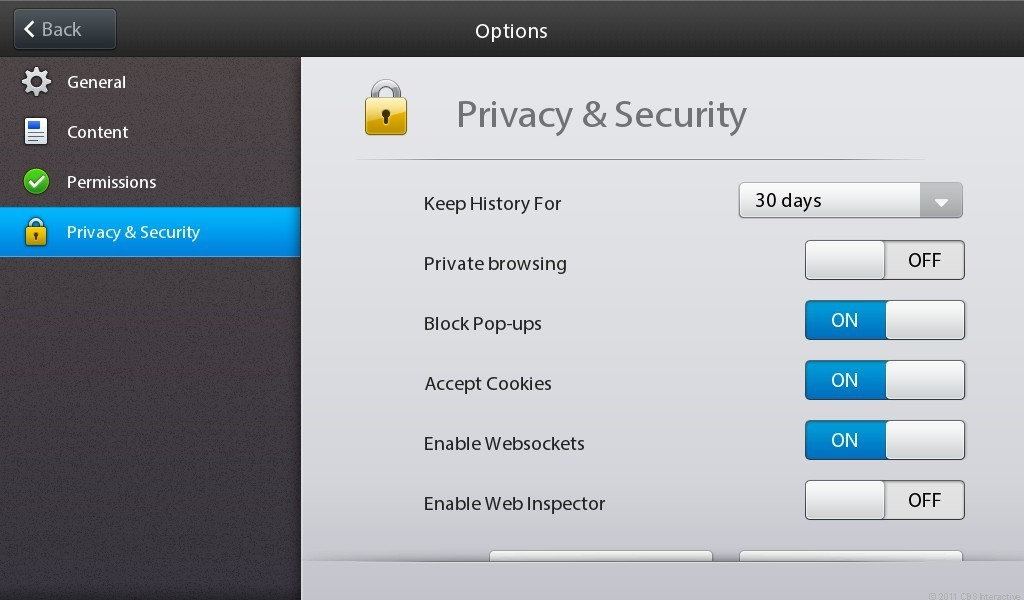 PlayBook browser privacy