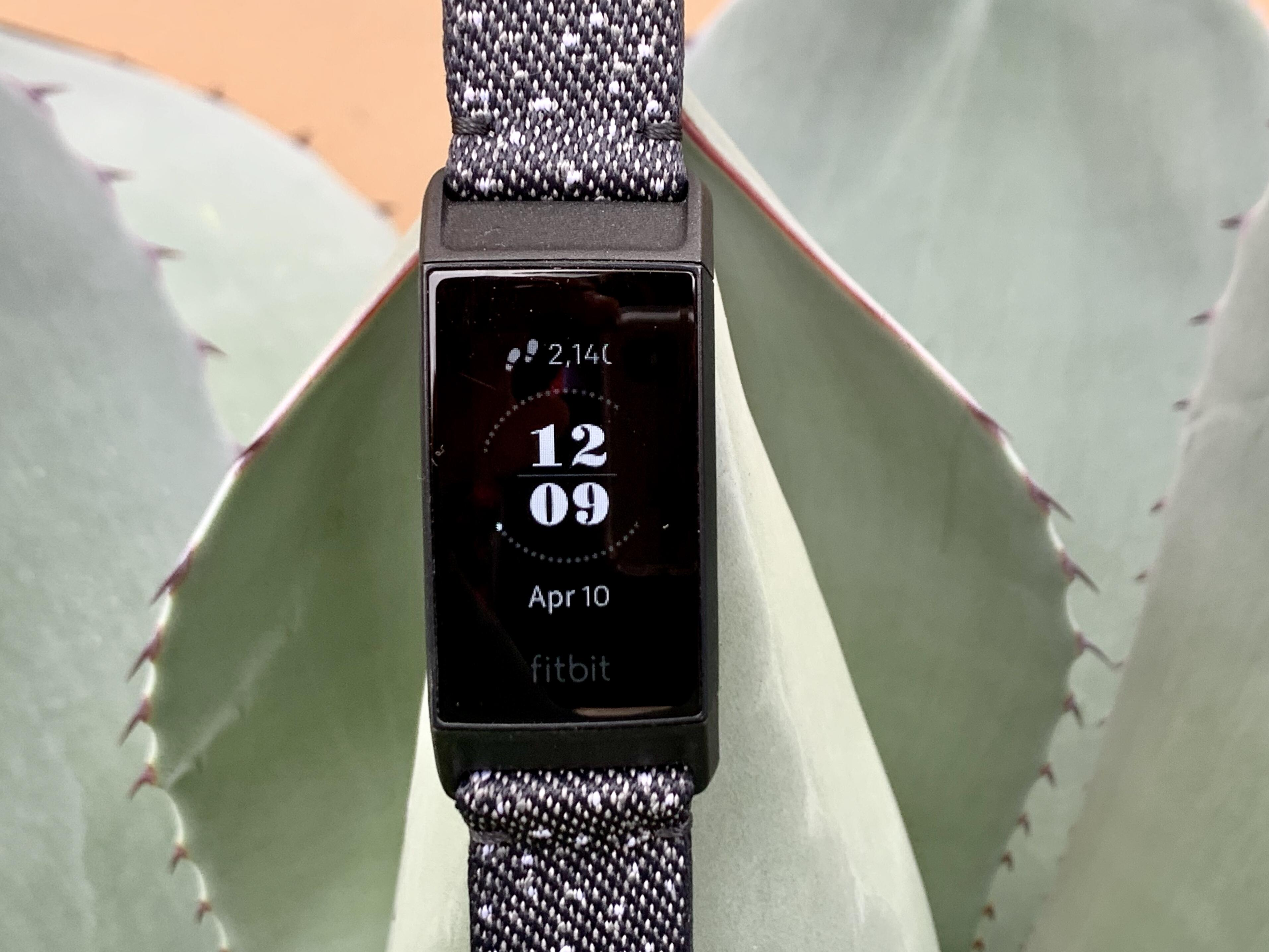 """<p>When it comes to wearables, few items are as crave-worthy as the <a href=""""https://www.cnet.com/reviews/apple-watch-series-5-2019-review/"""" target=""""_blank"""">Apple Watch Series 5</a>.&nbsp;</p>"""