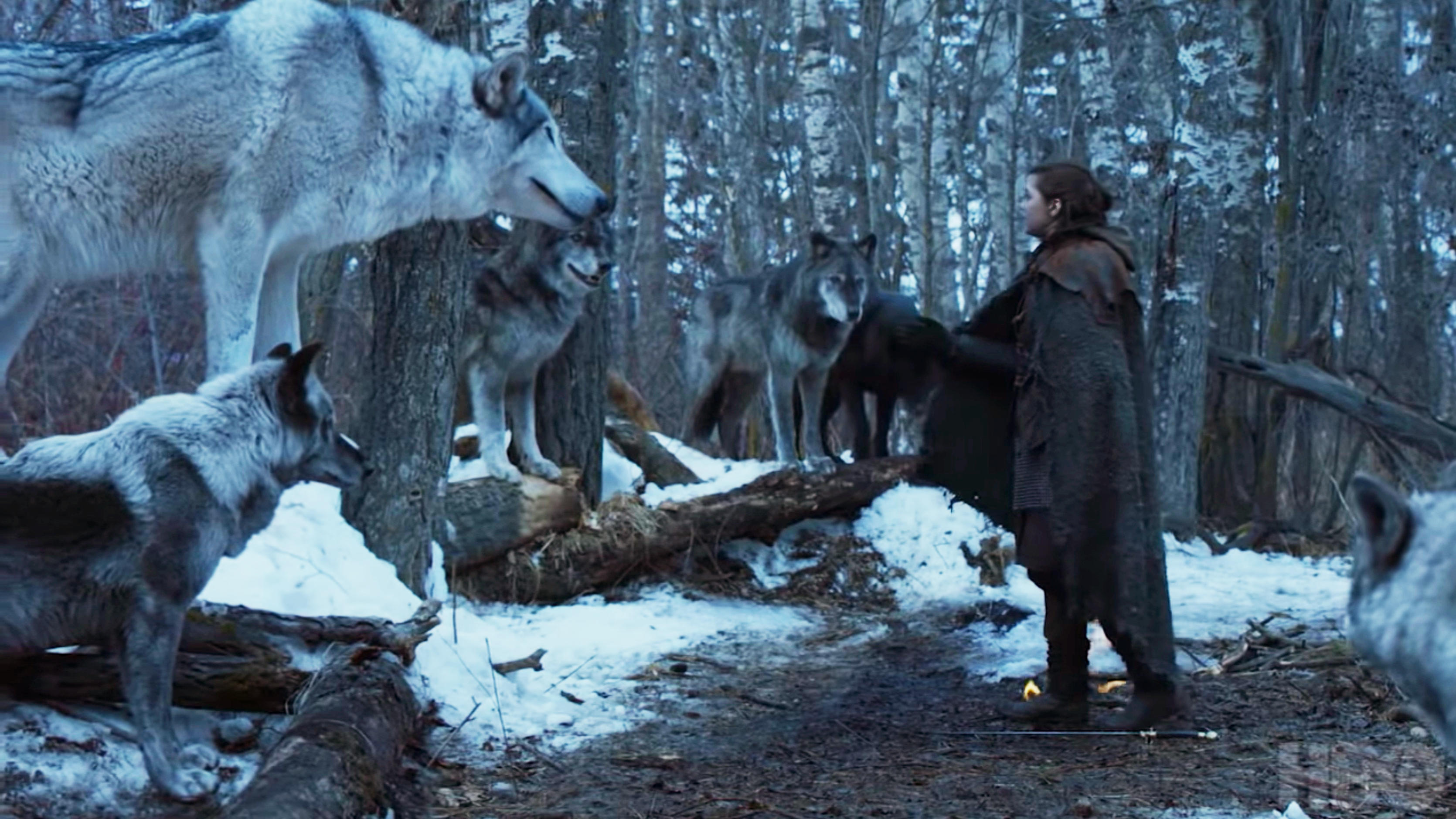 Debunked: There's a parallel between each direwolf and its master