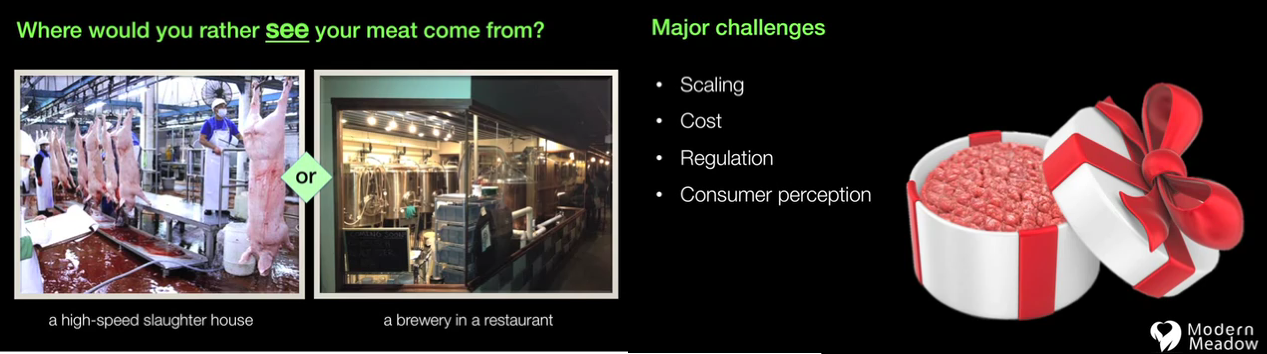 Slides prepared by startup Modern Meadow pitch 3D-printed meat as a more environmentally friendly approach to dinner.