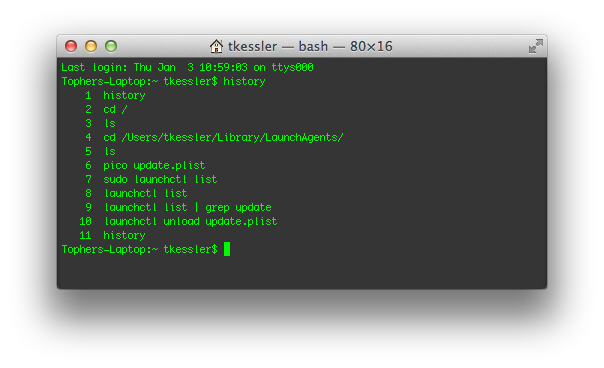 Terminal history in OS X