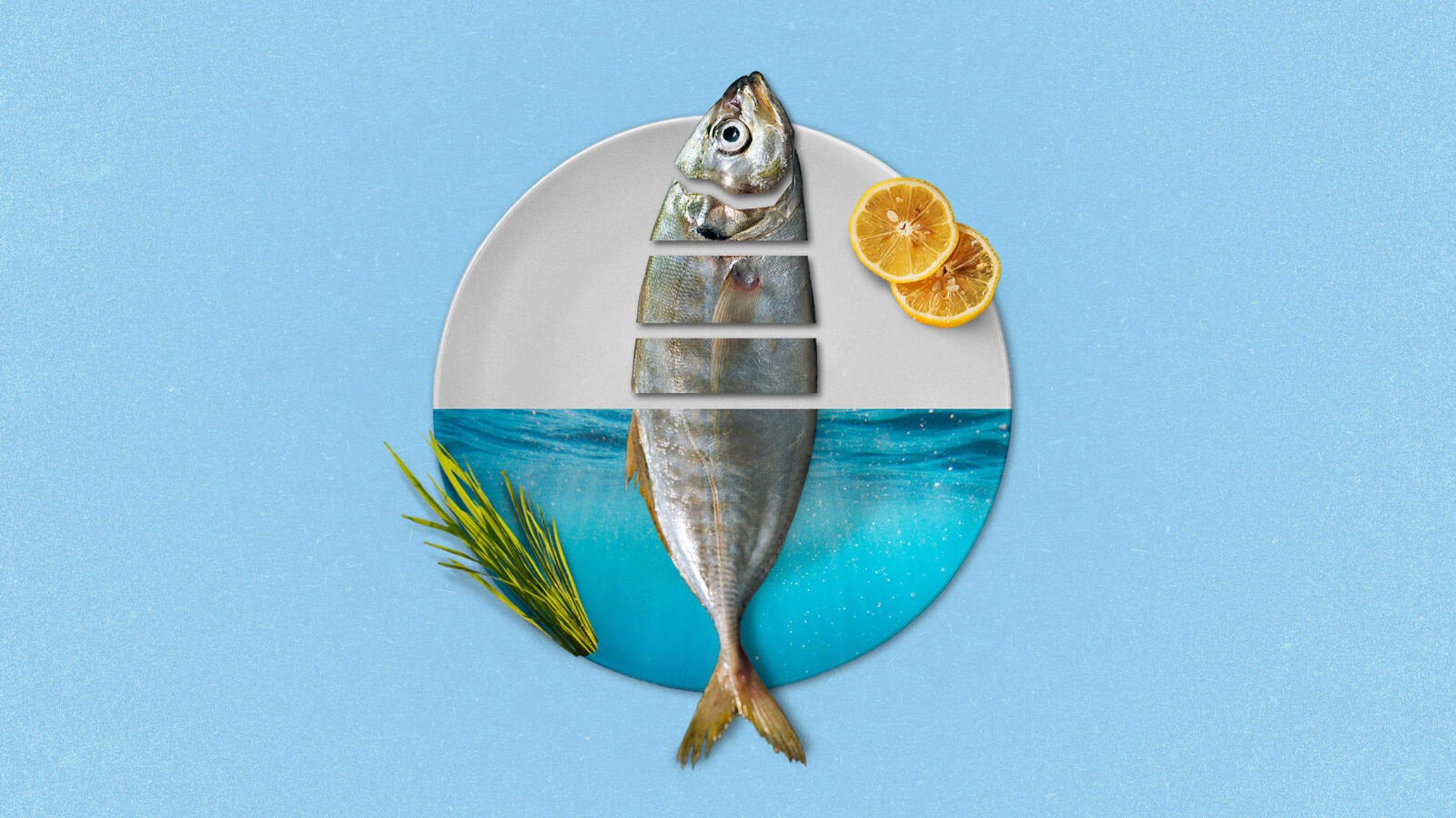 cnet-road-trip-food-story-illustration-v2