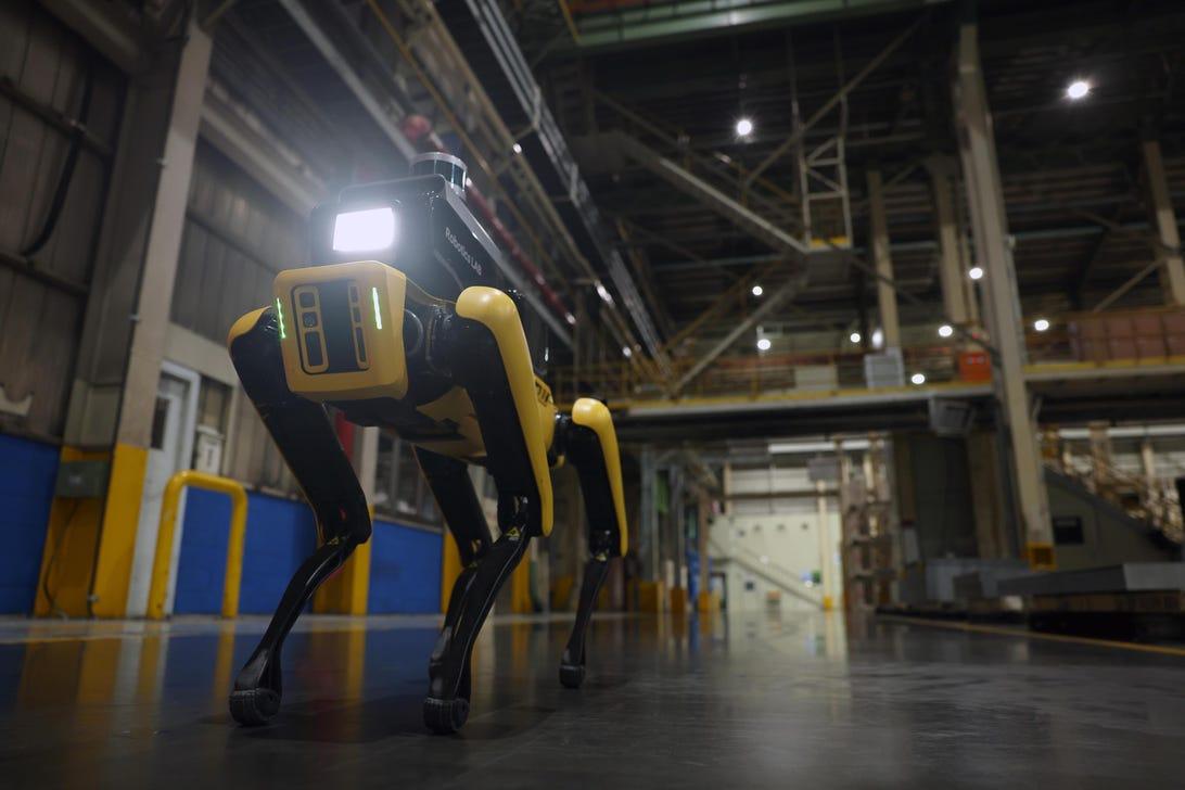 Hyundai Spot robot patrol