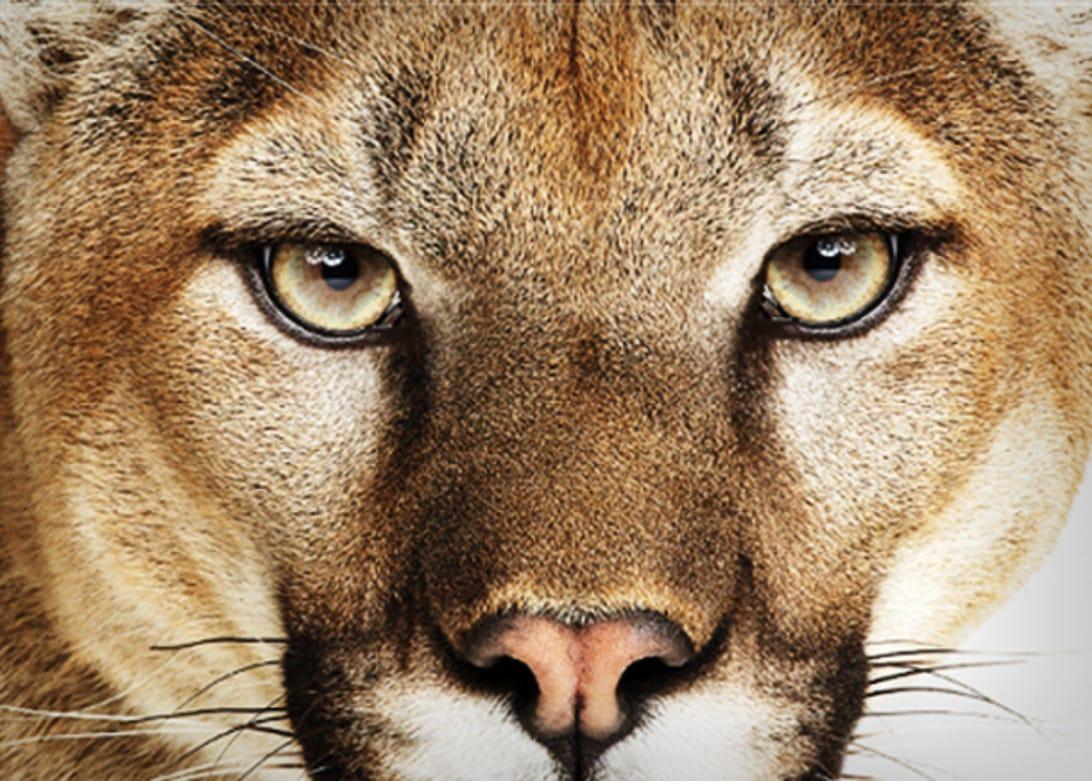 os-x-mountain-lion-1.jpg