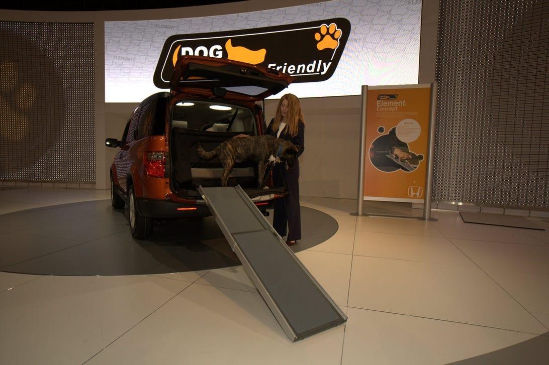 DogCars01.jpg
