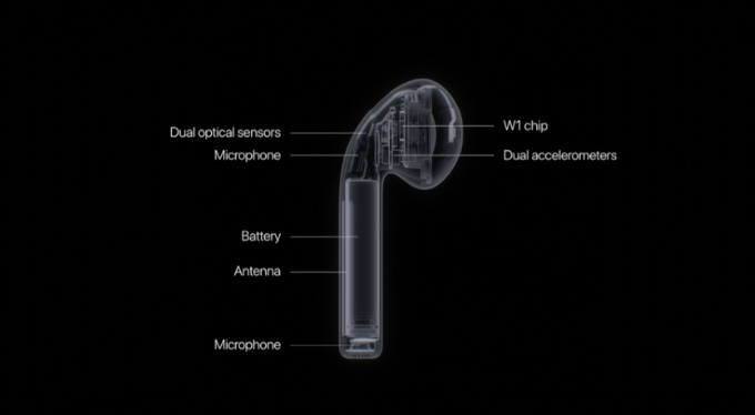 airpods-x-ray.png