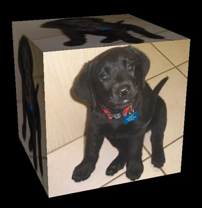 Rotating a cube with cute puppy images can give a dual-core PC a workout.