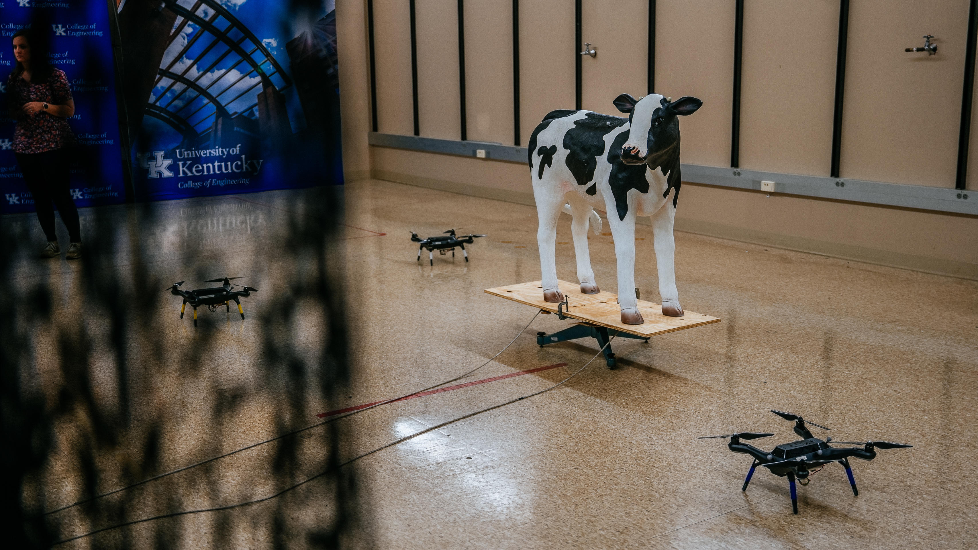 cattle-drones-4