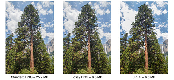 Lossy DNGs, supported in Adobe Lightroom since version 4 was released earlier this year and defined in the new DNG 1.4 spec, cuts the file size of regular DNG files significantly while preserving some of the image quality and flexibility of the original raw data. Note how the clouds aren't as washed out as in the JPEG image.