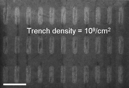 The dark lines are carbon nanotubes that sometimes -- but not always -- are placed in trenches. The more accurately IBM can place the nanotubes, the more likely they can be used as semiconductor devices in computer chips.