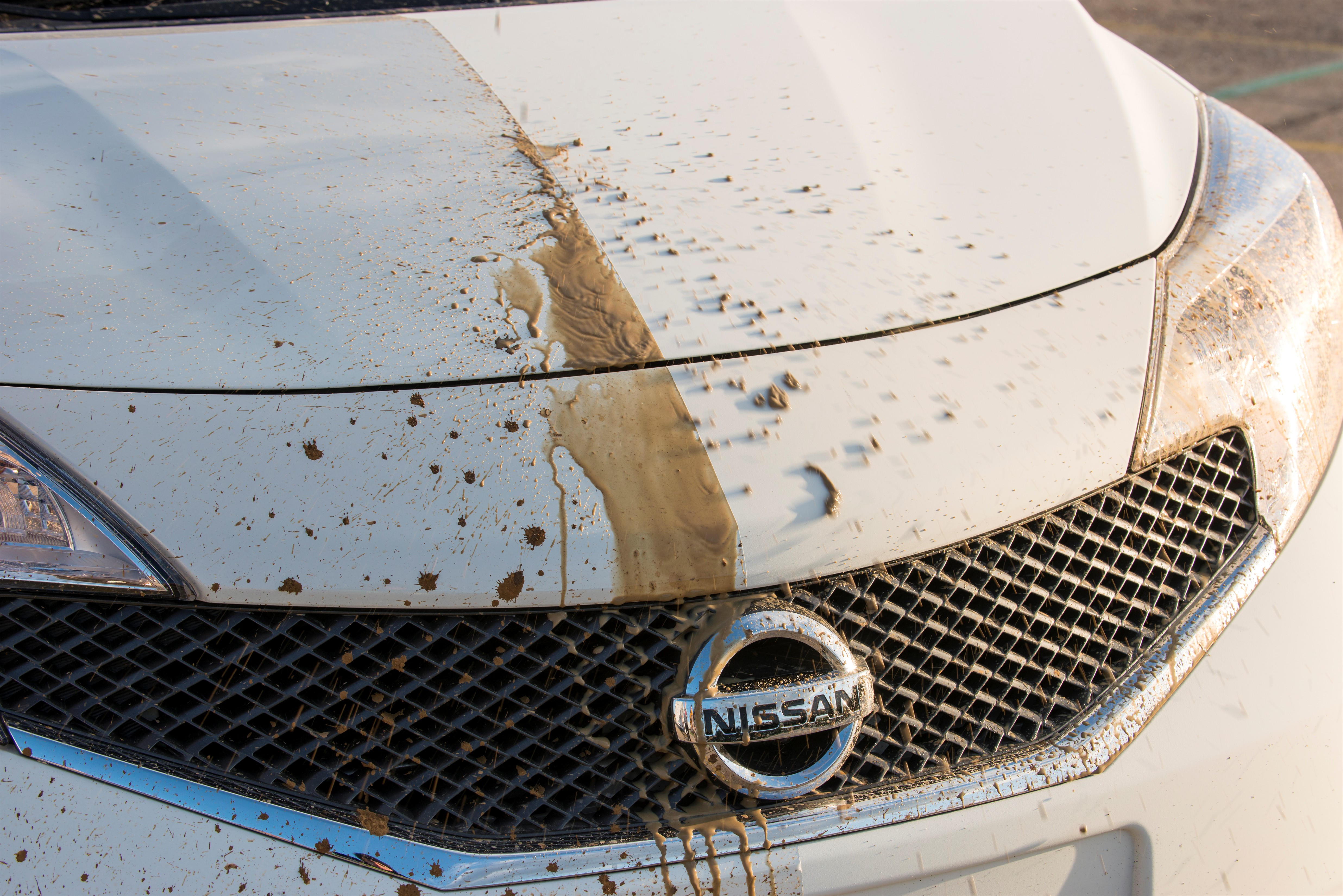 Nissan Ultra-Ever Dry test