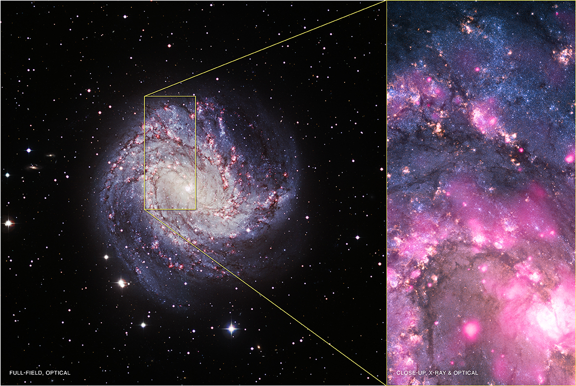 Black hole in spiral galaxy M83