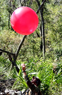 DARPA plans to launch 10 red weather balloons, somewhat larger than the one shown here, around the continental United States, and competitors are invited to try to identify the precise latitudes and longitudes of all 10 balloons to win a $40,000 prize.